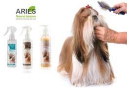 Snodatura del pelo del cane: cure e consigli da seguire
